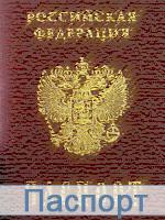 Паспорт собственника транспортного средства